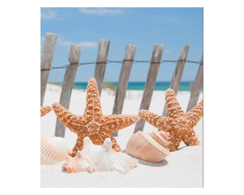 Vliesové fototapety na zeď Hvězdice na pláži | MS-3-0206 | 225x250 cm - Fototapety vliesové