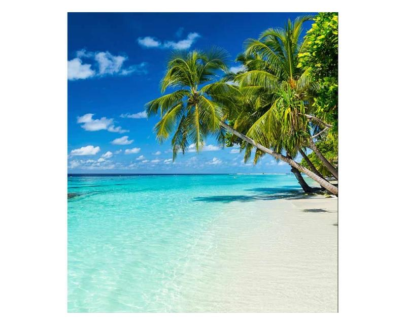 Vliesové fototapety na zeď Tropický ráj | MS-3-0215 | 225x250 cm - Fototapety vliesové