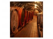 Vliesové fototapety na zeď Sudy s vínem | MS-3-0247 | 225x250 cm Fototapety vliesové