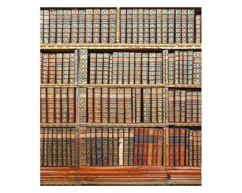 Vliesové fototapety na zeď Knihovna | MS-3-0263 | 225x250 cm - Fototapety vliesové