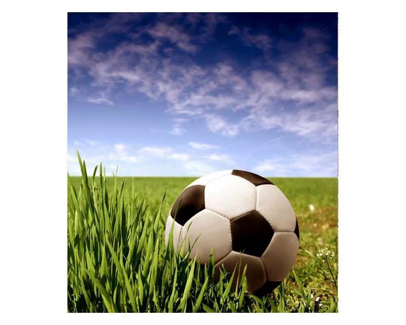 Vliesové fototapety na zeď Fotbalový míč | MS-3-0305 | 225x250 cm - Fototapety vliesové