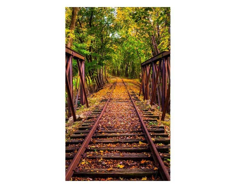 Vliesové fototapety na zeď Železnice v lese | MS-2-0055 | 150x250 cm - Fototapety vliesové