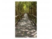 Vliesové fototapety na zeď Mangrovový les | MS-2-0059 | 150x250 cm Fototapety vliesové
