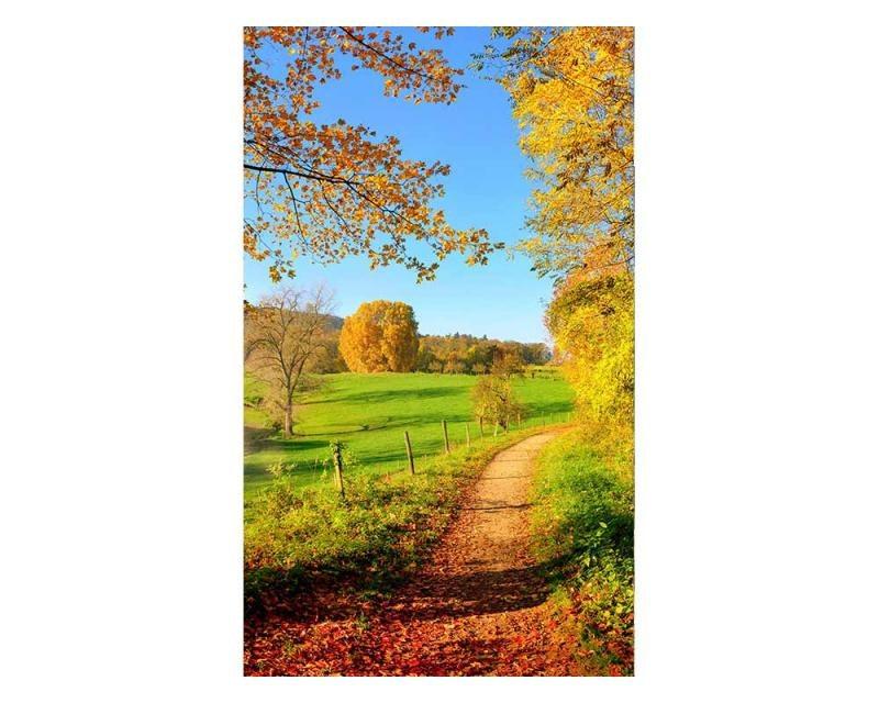 Vliesové fototapety na zeď Louka | MS-2-0066 | 150x250 cm - Fototapety vliesové
