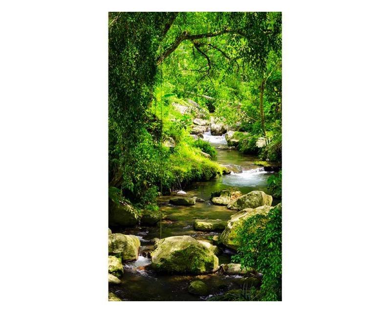 Vliesové fototapety na zeď Horský potok | MS-2-0079 | 150x250 cm - Fototapety vliesové