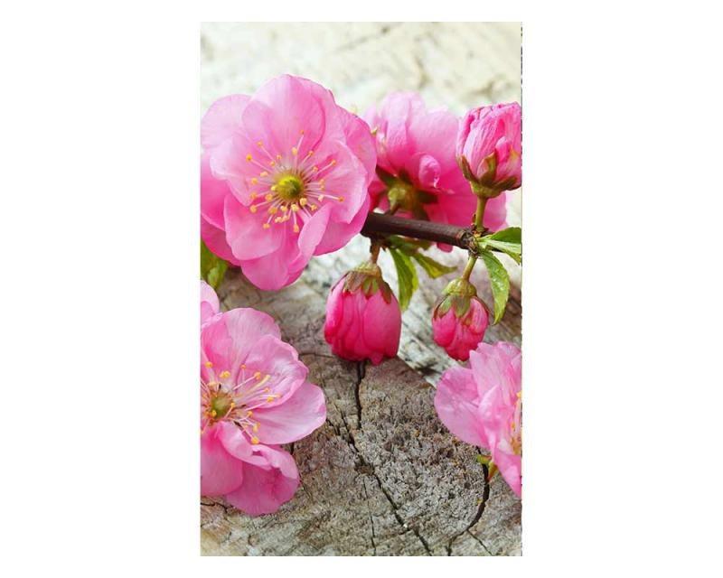 Vliesové fototapety na zeď Sakura | MS-2-0109 | 150x250 cm - Fototapety vliesové