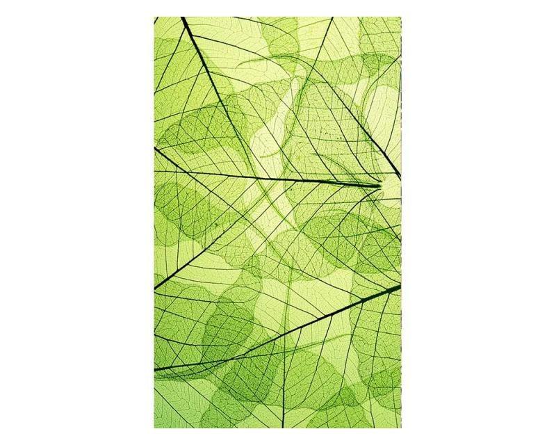 Vliesové fototapety na zeď Žilky listů | MS-2-0111 | 150x250 cm - Fototapety vliesové