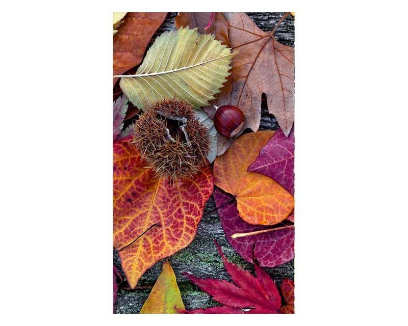 Vliesové fototapety na zeď Podzimní listí | MS-2-0112 | 150x250 cm - Fototapety vliesové