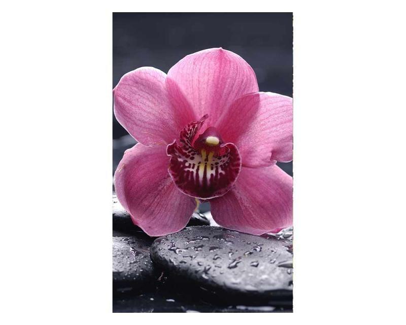 Vliesové fototapety na zeď Orchidej | MS-2-0120 | 150x250 cm - Fototapety vliesové