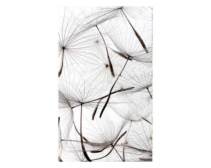 Vliesové fototapety na zeď Chmýří pampelišky | MS-2-0122 | 150x250 cm - Fototapety vliesové
