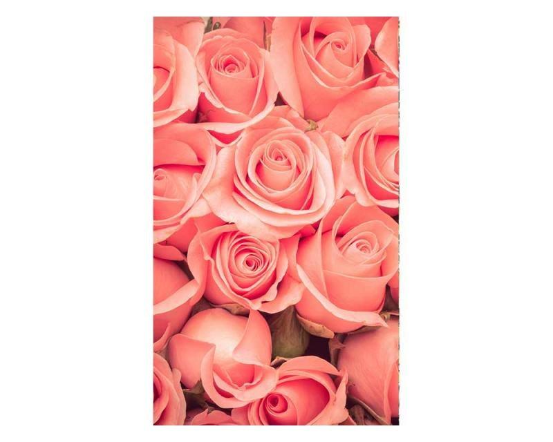 Vliesové fototapety na zeď Růže | MS-2-0133 | 150x250 cm - Fototapety vliesové