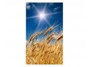Vliesové fototapety na zeď Pšeničné pole | MS-2-0136 | 150x250 cm Fototapety vliesové