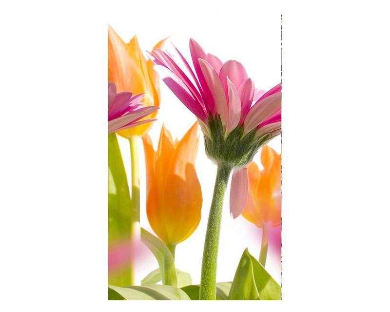 Vliesové fototapety na zeď Jarní květiny | MS-2-0142 | 150x250 cm - Fototapety vliesové