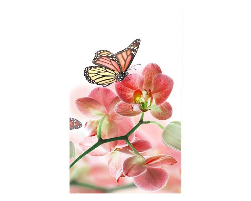 Vliesové fototapety na zeď Motýli a orchideje | MS-2-0146 | 150x250 cm - Fototapety vliesové