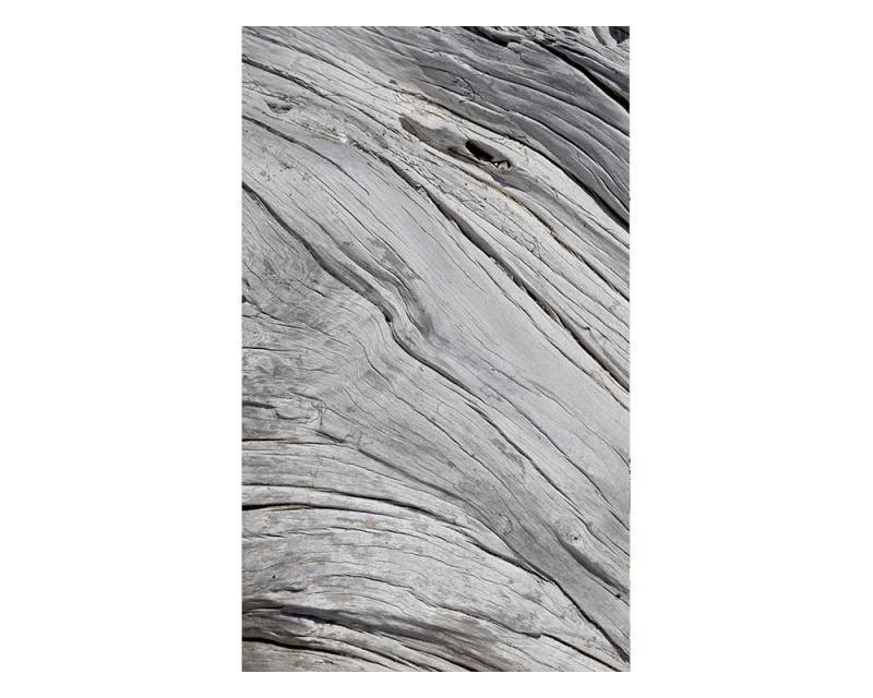 Vliesové fototapety na zeď Struktura stromu | MS-2-0160 | 150x250 cm - Fototapety vliesové