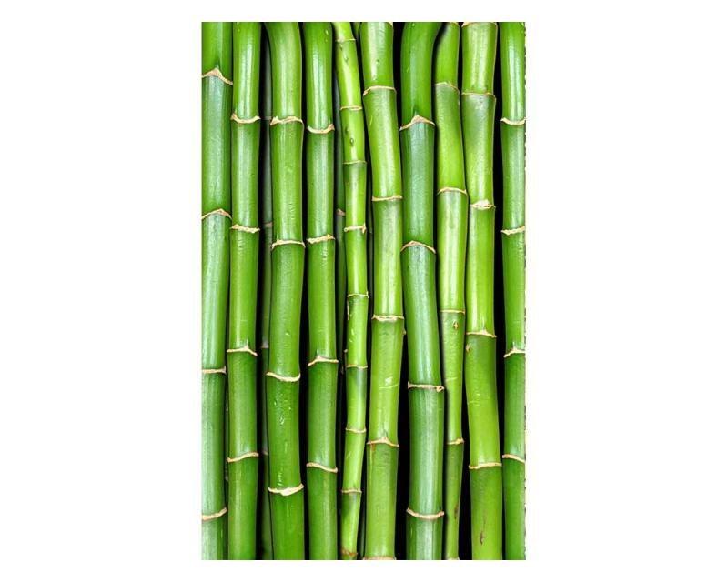 Vliesové fototapety na zeď Bambus   MS-2-0165   150x250 cm - Fototapety vliesové