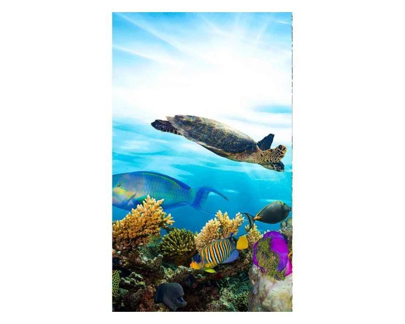 Vliesové fototapety na zeď Ryby v oceánu | MS-2-0216 | 150x250 cm - Fototapety vliesové