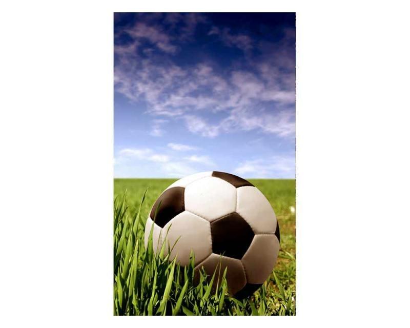 Vliesové fototapety na zeď Fotbalový míč | MS-2-0305 | 150x250 cm - Fototapety vliesové