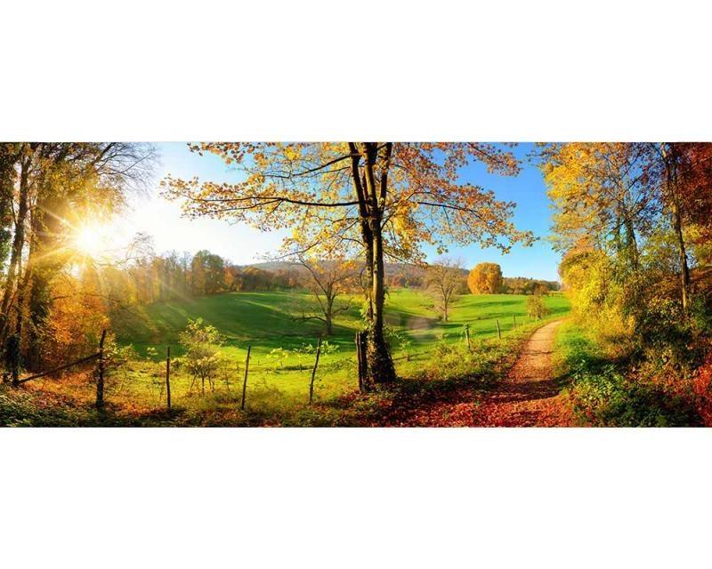 Panoramatické vliesové fototapety na zeď Louka | MP-2-0066 | 375x150 cm - Fototapety vliesové