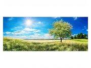 Panoramatické vliesové fototapety na zeď Strom na louce | MP-2-0096 | 375x150 cm Fototapety vliesové