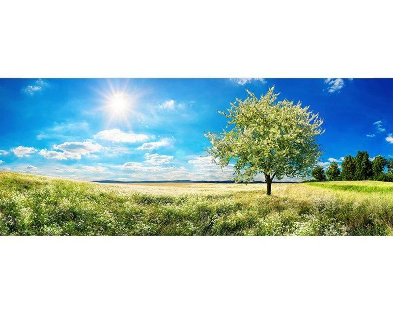 Panoramatické vliesové fototapety na zeď Strom na louce | MP-2-0096 | 375x150 cm - Fototapety vliesové