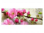 Panoramatické vliesové fototapety na zeď Sakura | MP-2-0109 | 375x150 cm Fototapety vliesové