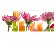 Panoramatické vliesové fototapety na zeď Jarní květiny | MP-2-0142 | 375x150 cm Fototapety vliesové