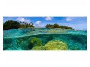 Panoramatické vliesové fototapety na zeď Korálový útes | MP-2-0200 | 375x150 cm Fototapety vliesové