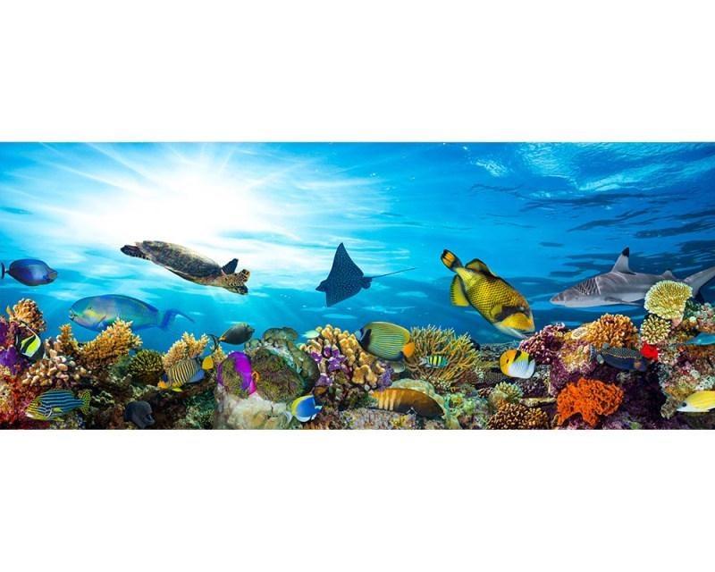 Panoramatické vliesové fototapety na zeď Ryby v oceánu | MP-2-0216 | 375x150 cm - Fototapety vliesové