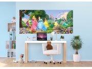 Vliesová fototapeta Disney Princezny na louce FTDNH-5378 | 202x90 cm Fototapety pro děti