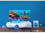 Vliesová fototapeta Disney Dory a Nemo FTDNH-5379 | 202x90 cm Fototapety pro děti