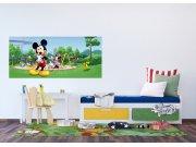 Vliesová fototapeta Mickey Mouse v parku FTDNH-5382 | 202x90 cm Fototapety pro děti