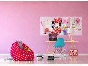 Vliesová fototapeta Minnie a Daisy FTDNH-5383 | 202x90 cm Fototapety pro děti