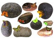 Samolepicí dekorace Kameny a motýli SM-3436, rozměry 42,5 x 65 cm Samolepící dekorace na zeď
