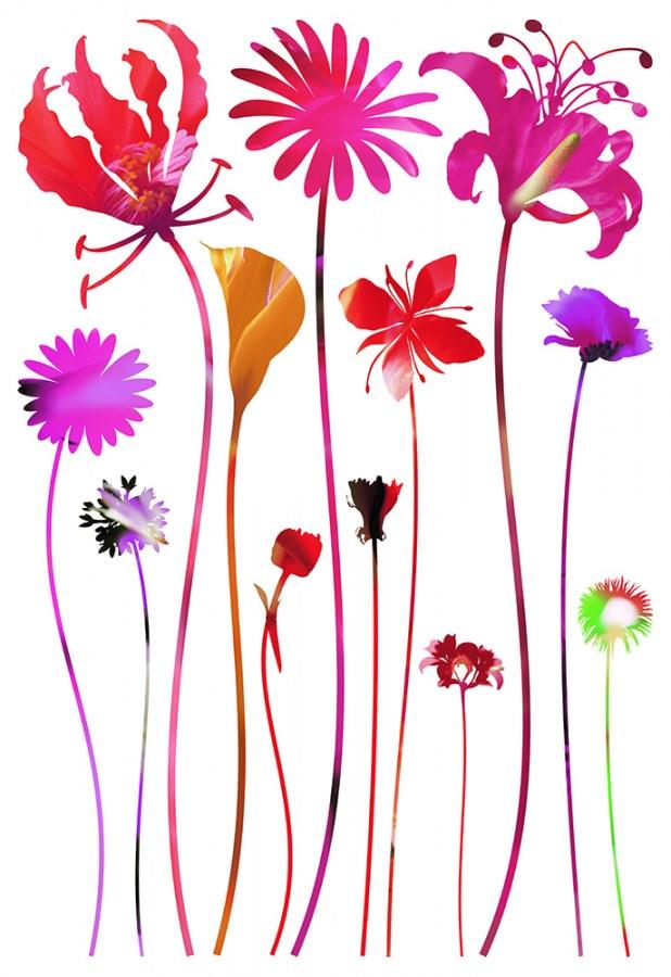 Samolepicí dekorace Květiny SM-3438, rozměry 42,5 x 65 cm - Samolepící dekorace na zeď