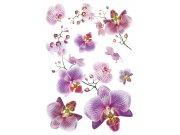 Samolepicí dekorace Orchidej SM-3440, rozměry 42,5 x 65 cm Samolepící dekorace na zeď