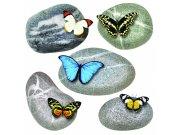 Samolepicí dekorace Motýli na kamenech SS-3853, 30x30 cm Samolepící dekorace na zeď