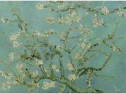 Vliesová obrazová tapeta 200330 | 400 x 280 cm | Van Gogh | lepidlo zdarma Tapety BN international - Tapety Van Gogh