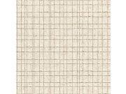 Vliesová tapeta mřížkovaný vzor Kerala 551310 | Lepidlo zdarma Tapety Rasch - Tapety Kerala