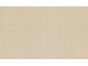 Vliesová tapeta na zeď Filigrano 964011 | Lepidlo zdarma Tapety Rasch - Tapety Filigrano