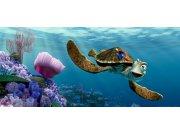 Vliesová fototapeta Nemo a Želva FTDNH-5312 | 202x90 cm Fototapety pro děti