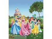Fototapeta vliesová AG Princezny na louce FTDNXL-5112 | 180x202 cm Fototapety pro děti