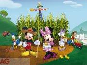 Fototapeta AG Mickey & Minnie FTDNXXL-5029 | 360x270 cm Fototapety pro děti