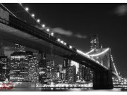 Fototapeta AG Most v Brooklynu FTS-1305 | 360x254 cm Fototapety na zeď