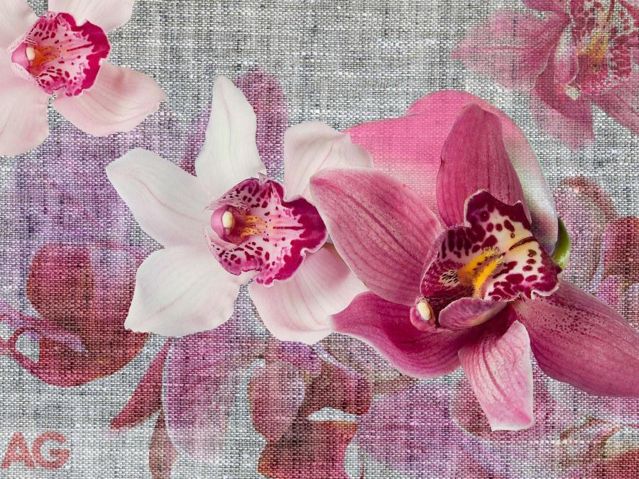 Vliesová fototapeta AG Design Orchids FTNXXL-1148, rozměry 330 x 255 cm