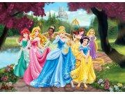 Vliesová fototapeta AG Princess FTDNM-5217 | 160x110 cm Fototapety pro děti