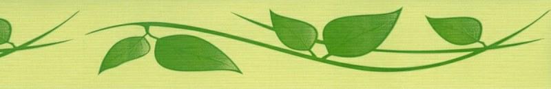 Samolepící bordura Zelené listy SB02-406, rozměry 5 cm x 10 m - Samolepící bordury