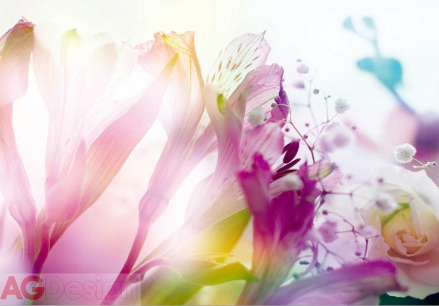 Vliesová fototapeta AG Design Light Flowers FTNXXL-0443, rozměry 330 x 255 cm