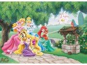 Vliesová fototapeta AG Princezny a zvířátka FTDNM-5231 | 160x110 cm Fototapety pro děti