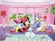 Fototapeta AG Minnie & Daisy FTDNXXL-5035 | 360x270 cm Fototapety pro děti
